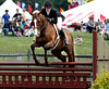 Kimberly Nevitt rides Pardoned in the National Hunter Derby at the June Fete Horse Show Saturday, June 6, 2015.<br /> Bob Raines--Montgomery Media
