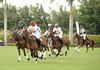 Playing Polo<br /> photo by Rob Rich/SocietyAllure.com © 2013 robwayne1@aol.com 516-676-3939