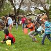 The Petaluma Mother's Club  Easter Egg Hunt at McNear Park on April 12, 2014