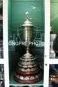 Beautiful highly prized Trophy that stays at this Polo Club.