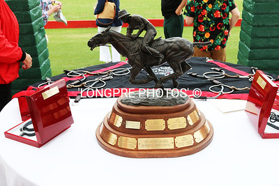 TROPHIES offered for todays Polo Match.