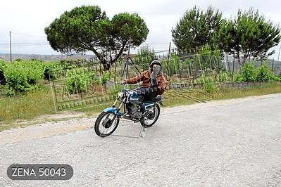 ZENA 50043
