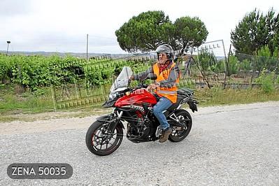 ZENA 50035