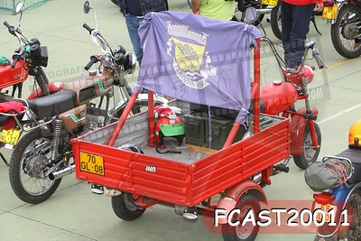 FCAST20011