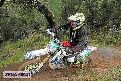 ZENA 50041