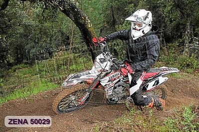 ZENA 50029