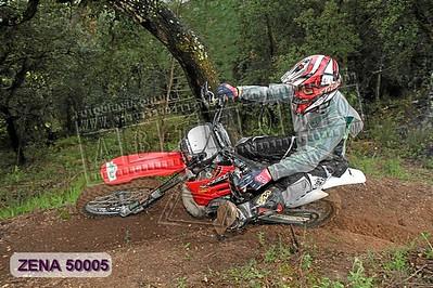 ZENA 50005