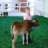 ZEBU CATTLE SHOW 11-10-12 : LOUISIANA STATE FAIR 2012