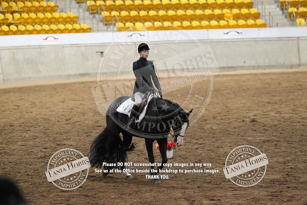 19	Senior Youth Hunt Seat Equitation