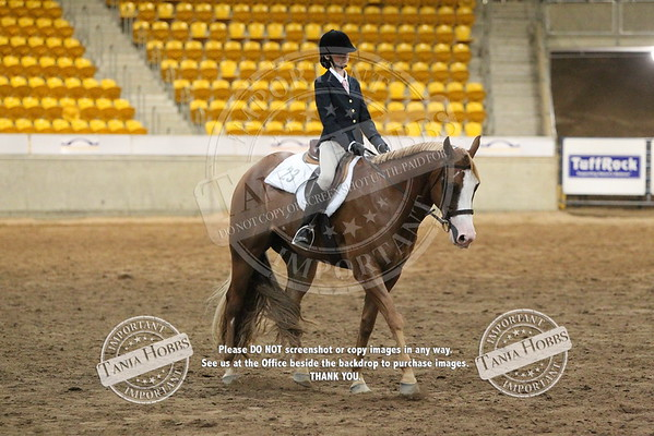 20	Junior Youth hunt seat equitation
