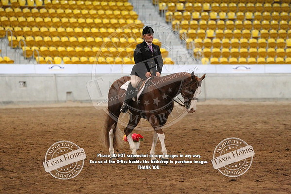 21	Amateur hunt seat equitation