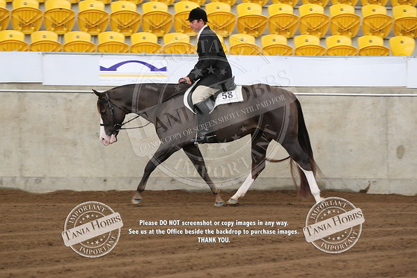 30	Open Hunter Under Saddle Classic
