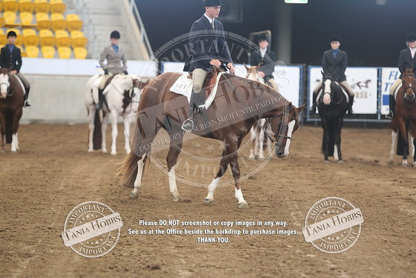 31	Youth Hunter Under Saddle Stakes