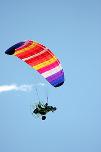 A paraglider dropped by for a look-see