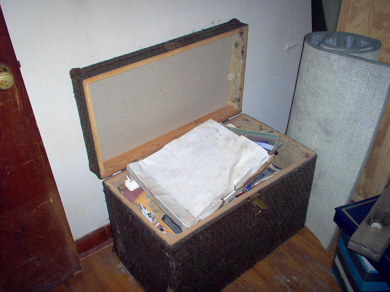 Like most people we kept a lots of our valued keepsakes in big trunks...on the floor. Frank has lost all of his Navy awards, old 'CrackerJack' uniform, his entire huge baseball card collection, just to name a few. The flag that had draped my Dad's coffin was in this trunk. And yes, that is MOLD growing in there.