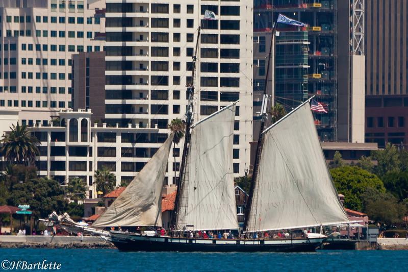 Parade of Tall Ships