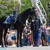 riderless horse, in memory of those who lost thier lives.