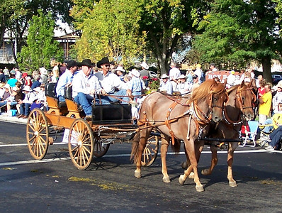 Horses pulling  Buggy Pendleton Round-Up Parade 2010