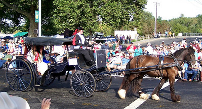 Sorrows Blessing Buggy and Beautiful Horse-Pendleton Round-Up Parade 2010