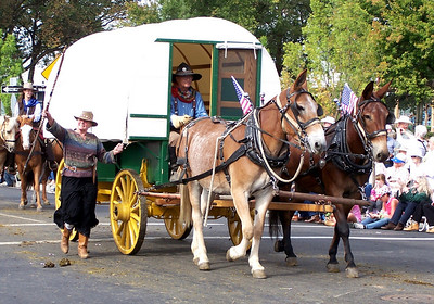 Mule Team & Covered Wagon