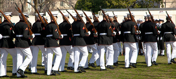 Marine Marching Platoon