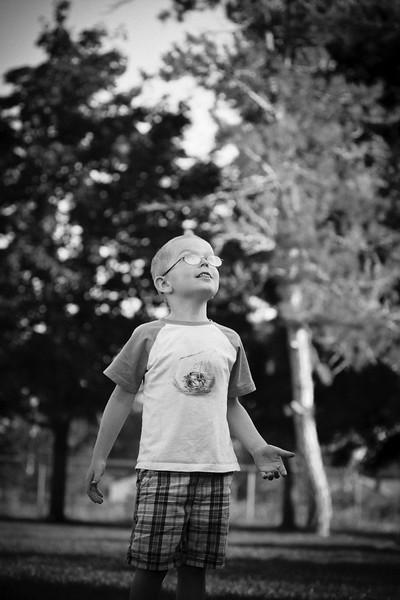 StevePetersonPhotography-0356.jpg