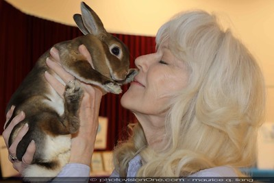 For the love of bunnies.