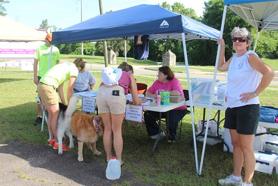 Paws in the Park 2015