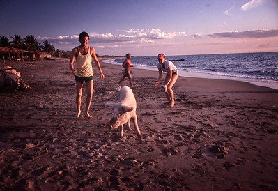 Fred Corvi and Jennifer Wagstaff chasing pig on Cedeno beach in Honduras