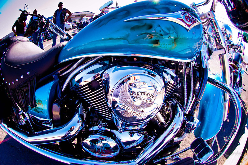 """Pedro 66 Poker Run; to support """"That Others May Live Foundation"""""""