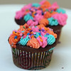 4th annual Cupcake Festival, to benefit Friends of the Lawrence Library in Pepperell. (SUN/Julia Malakie)