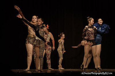 2017_Dance_U_Recital-5