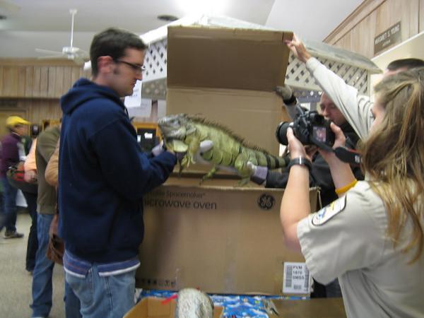 <b>Pet Amnesty Day, January 14, 2012</b> Elizabeth Lesley's parting shot