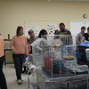 <b>Pet Amnesty Day, January 14, 2012</b> Looking for a home