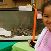 <b>Pet Amnesty Day, January 14, 2012</b> Hoping to take home that snake in the window <i>- Kay Larche</i>