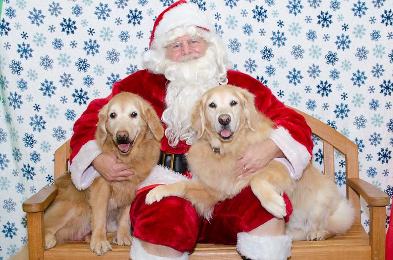 Santa-Paws-2-3pm-Dec-6-115