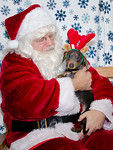Santa-Paws-1-2pm-Dec-6-206