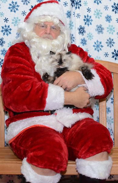 Santa-Paws-2-3pm-Dec-6-112