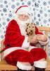 Santa-Paws-2-3pm-Dec-6-114