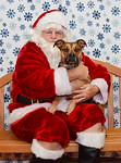 Santa-Paws-1-2pm-Dec-6-213