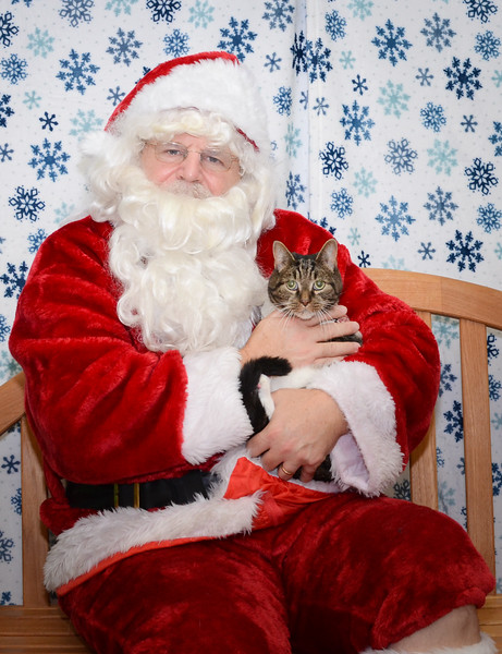 Santa-Paws-2-3pm-Dec-6-102