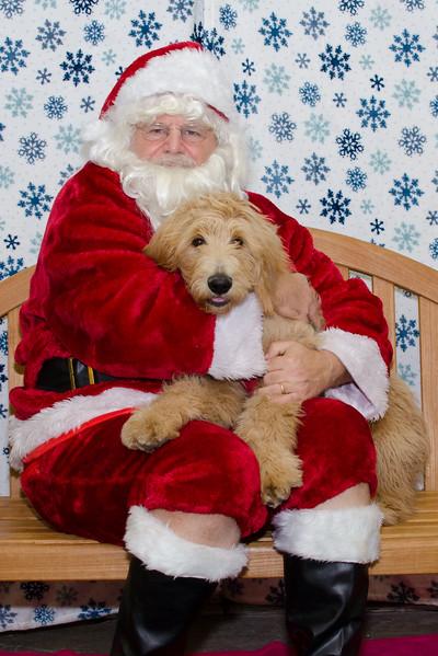 Santa-Paws-2-3pm-Dec-6-106