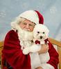 Santa Paws 2016 - Day 1 - Sun Dec 4-242