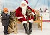 Santa Paws 2016 - Day 1 - Sun Dec 4-229