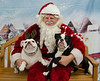 Santa-Paws-2017-Day-1-Saturday-Dec-2nd-238
