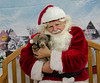 Santa-Paws-2017-Day-1-Saturday-Dec-2nd-235