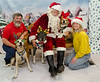 Santa-Paws-2017-Day-1-Saturday-Dec-2nd-234