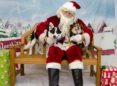 2017 - 12 Santa Paws Photos - Sunday