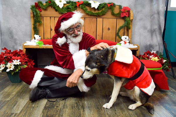 Pets with Santa Charity Event