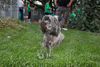 016_KCHS Doggie Jog 092814_3467-2